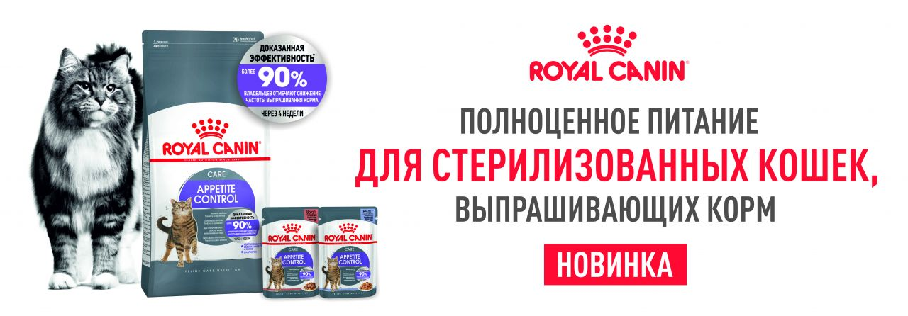 Royal canin appetite control care